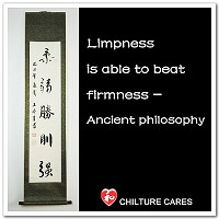 Martial Arts Quotes Chinese Calligraphy Wall Scroll