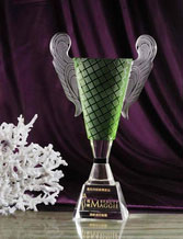 Engraved Crystal Trophy Award with Check Pattern Ears