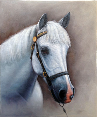 Hand Painted White Horse Oil Painting On Cavans